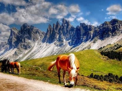 Trekking por los Dolomitas di Brenta